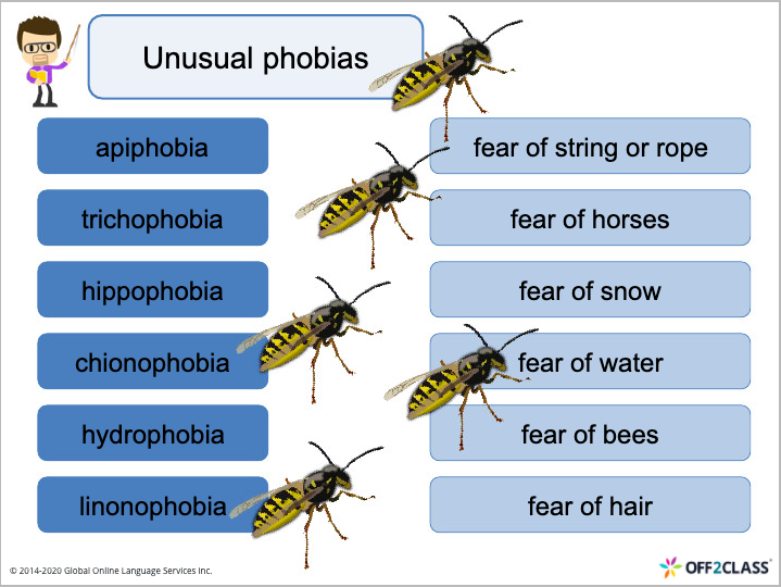 speaking ESL lesson plan Fears and Phobias